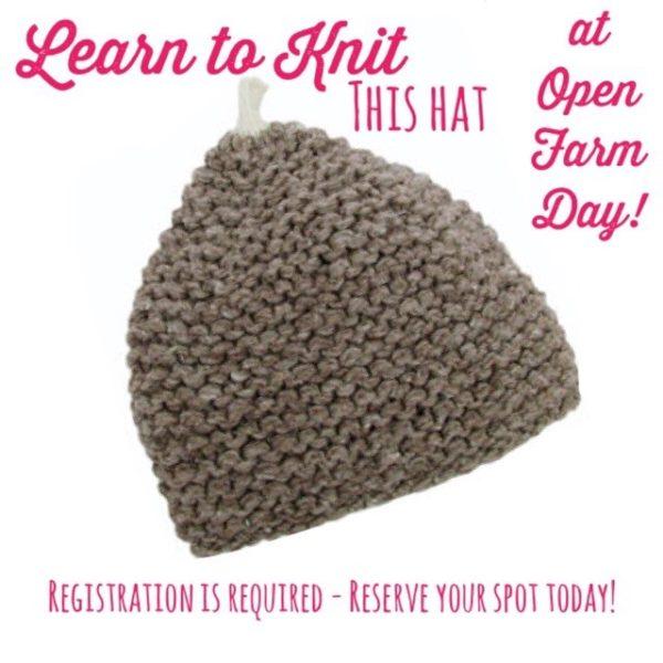 Learn to Knit Open Farm Day